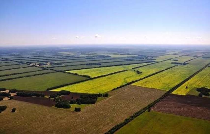 Участникам АТО предоставили неменее 26 тыс. земельных участков всамом начале года