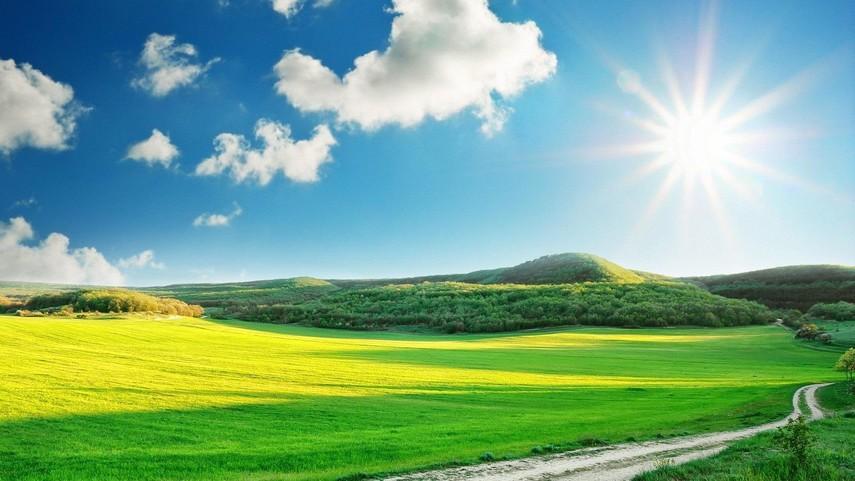 В совете Рады поддержали продление моратория на реализацию земли еще нагод