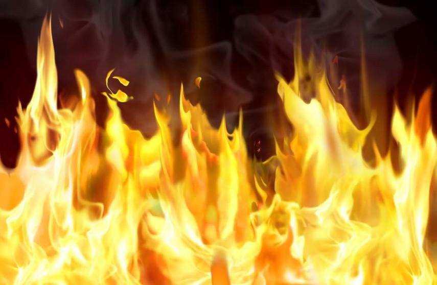 ВКиеве наТрухановом острове появился пожар, огонь оцепил 5 га