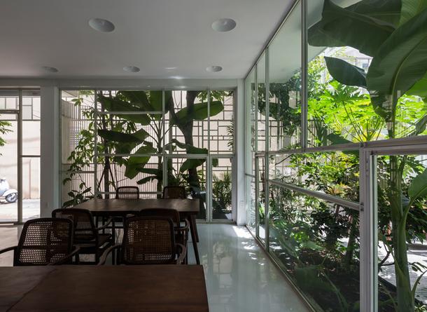 dom vo vietname9
